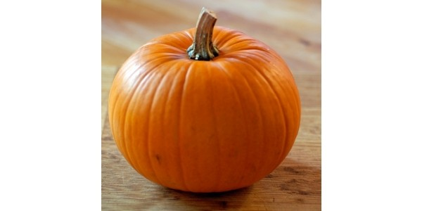 Recipes For Pumpkins