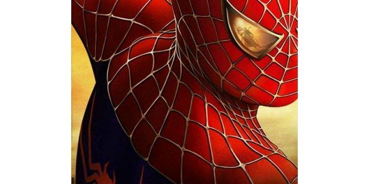 spiderman rug home bargains