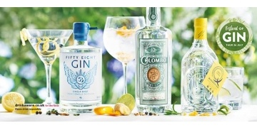 aldi-gin-festival-10-new-gins-and-free-next-day-delivery-service-182559