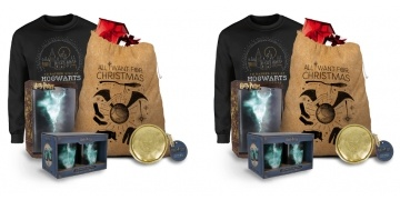 harry-potter-mega-christmas-gift-bundle-gbp-2499-zavvi-183291