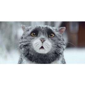 Mog The Cat Book/Plush Sainsbury's