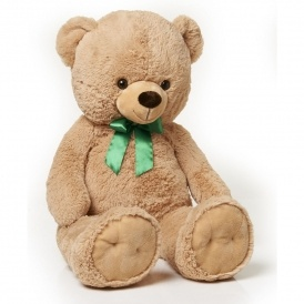Giant Teddy Bear £10 Wilko