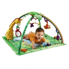 Rainforest Deluxe Gym £29.99 Babies R Us