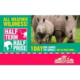 Knowsley Safari Park Half Price
