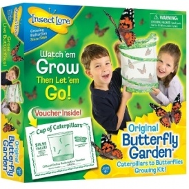 Insect Lore Butterfly Garden £10.49