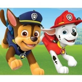 Meet Paw Patrol @ Toys R Us