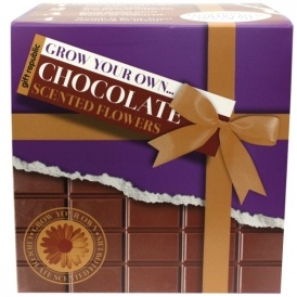 Grow Your Own Chocolate Flowers £7.99