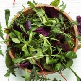 Wash Salad Leaves, Health Officials Warn