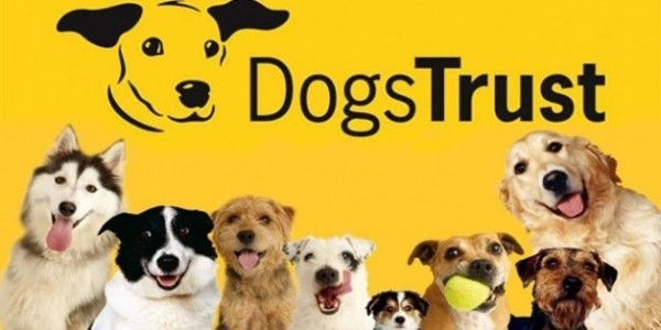 FREE 'Be Dog Smart' Safety Workshops For Parents & Children With Dogs Trust