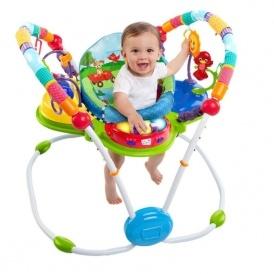 Baby Einstein Activity Jumper £49.99
