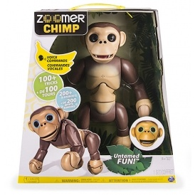 Where To Buy Zoomer Chimp In The UK 2016