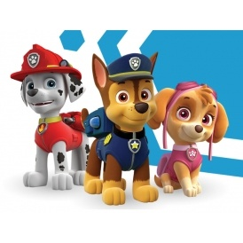 Scam Warning Issued Over Paw Patrol Live