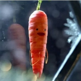 limited edition kevin the carrot soft toy in stores. Black Bedroom Furniture Sets. Home Design Ideas