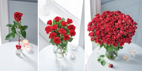 Valentine's Day Flowers From £3 @ Aldi
