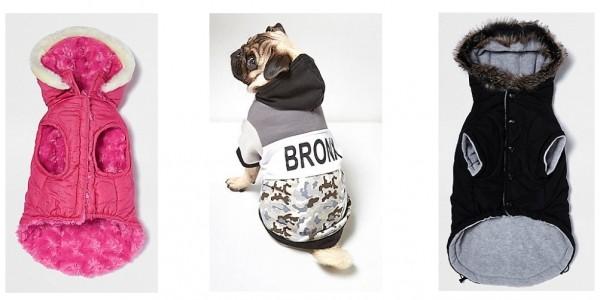 Dog Clothing Sale @ River Island
