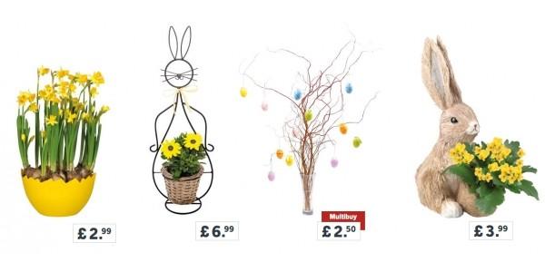 Easter Flowers @ Lidl