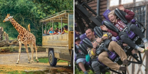 Family Theme Park: Surrey 1-Night 4* Family Stay + Chessington World Of Adventures Park Tickets From £135 @ Go Groopie