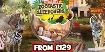 zootastic-sleepover-packages-from-gbp-129-chessington-world-of-adventure-177428