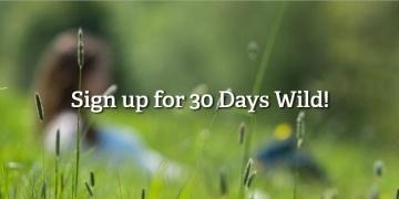 free-30-days-wild-wildlife-pack-wildlife-trust-181397
