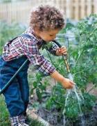 child-garden