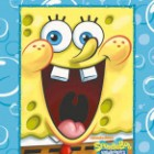 t_2714_spongebob_personalised_book