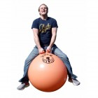 Space Hopper 1