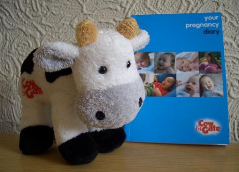 cow and diary