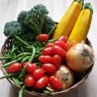 vegetable01