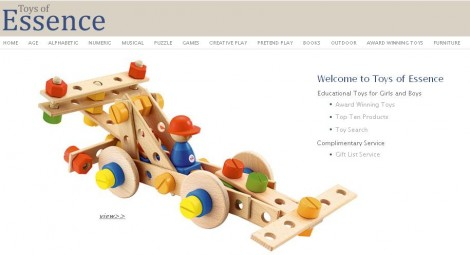Toys Of Essence Wooden Educational Toys