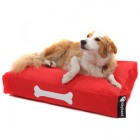 dog_red_small