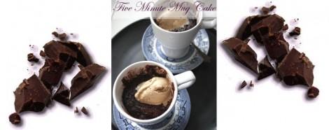 fiveMinuteChocolateMugPudding