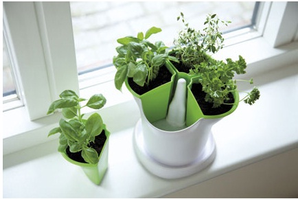 The Stewart Company Self Watering Herb Pot 1