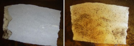 Paper in coffee
