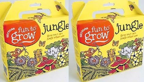 jungleinabox