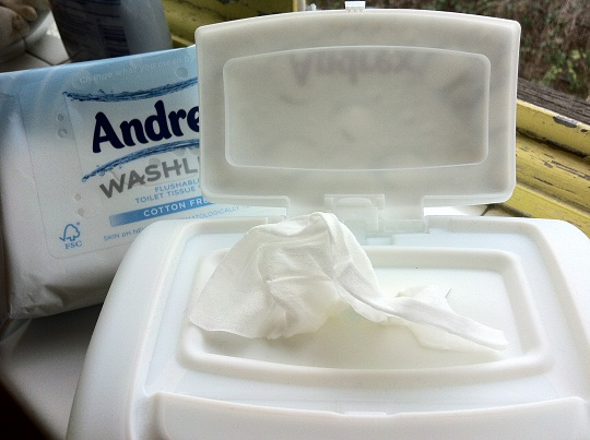 Andrex Washlets Review