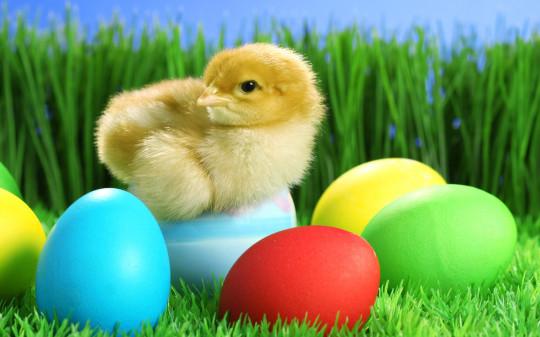 Easter-Eggs20