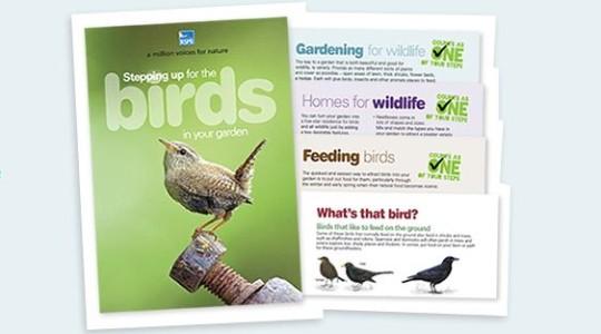 Birds RSPB