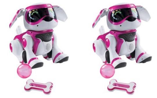 teksta puppy pink