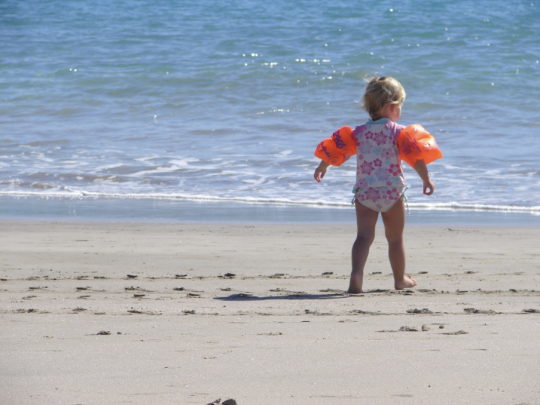 Ban fines for term time holidays