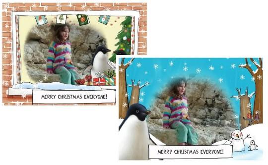 Monty the Penguin app