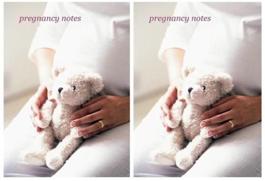 Jojo Maman Bebe Pregnancy Journal