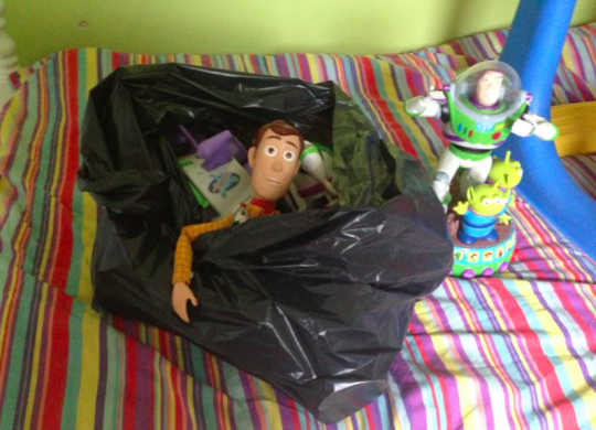 Buzz And Woody In The Bin