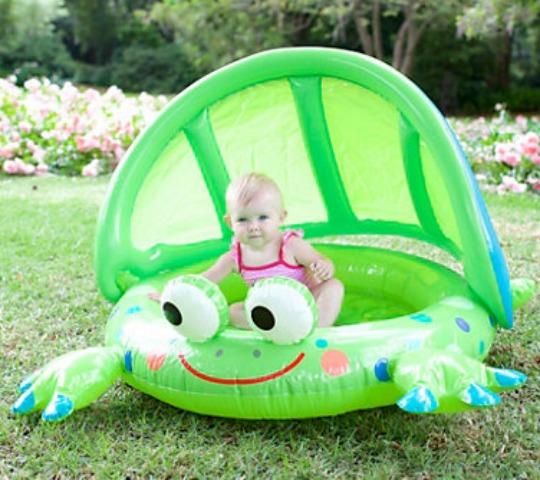 elc frog pool pm