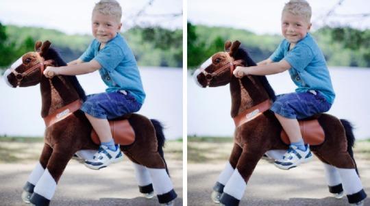 horsey1