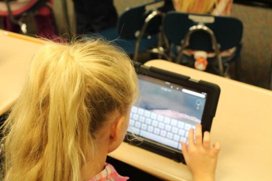 Social media and screen bans for kids